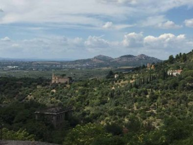 Explore hadrians villa and the stunning surroundings with your guide.