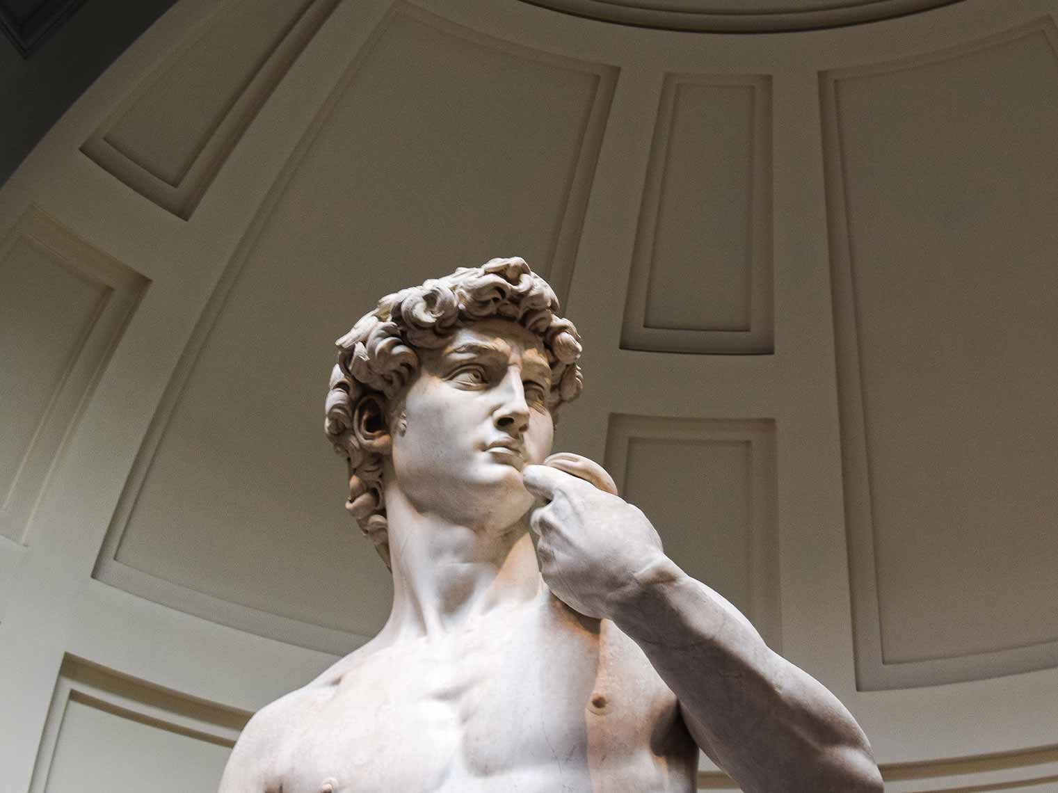 michelangelo's david on a private museum tour in Florence.