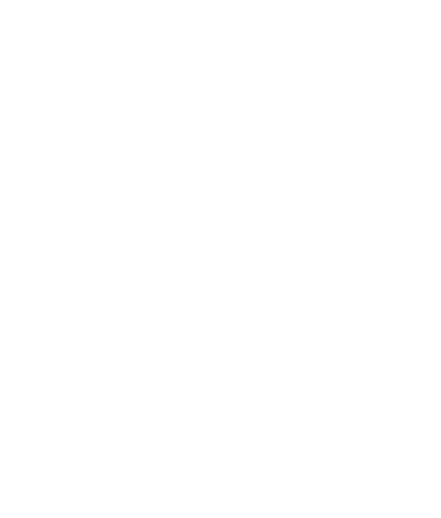 Travelers choice logo from tripadvisor